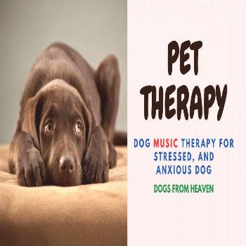 Dog Grooming Bath Pet Therapy - Dog Music Therapy For Stressed and Anxious Dogs